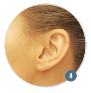 step4-ear